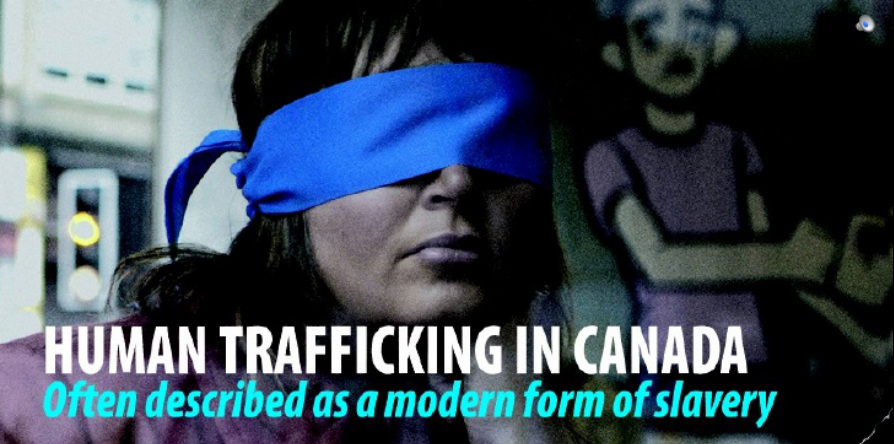human trafficking in canada New york (thomson reuters foundation) - canada's ontario has become the country's first province to offer free legal help to victims of human trafficking, part of its concerted effort to end modern-day slavery.